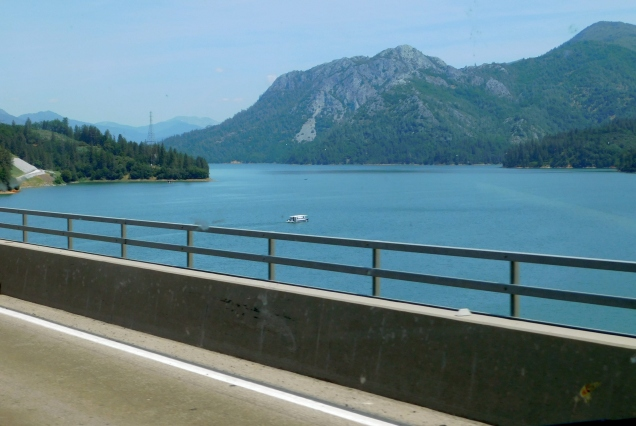 Beautifully full Shasta Lake!