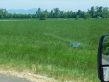 Growing grass seed - it's a big industry in Oregon. Click to read the sign.