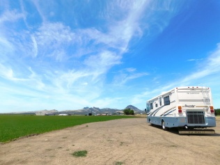 Lunch near the Sutter Buttes.