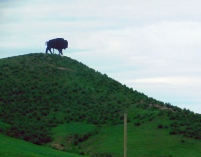 I missed shooting the Welcome to Colorado sign, but I did shoot this welcoming bison that stands at the state line.