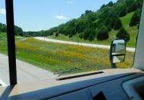 2019-6-19j Arkansas roadside