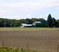 An Oregon grass seed farm.