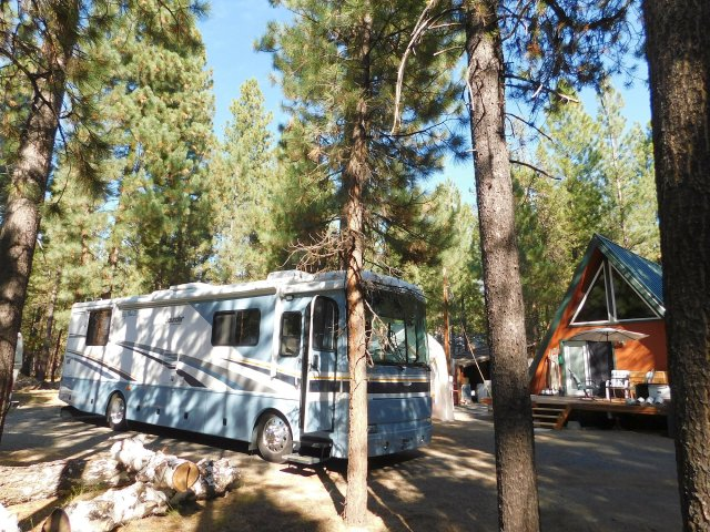 2019-9-14n Big Blue in the La Pine woods