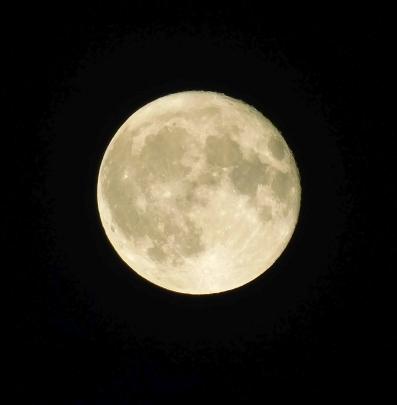 ♫ Shine on, ♪ shine on harvest moon... ♪ ♫