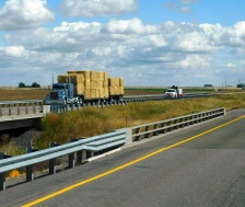 I saw many hay truck moving west on I-84.