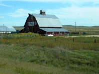 Barns seemed hard to find - but here's a beautiful specimen I shot in Nebraska.