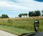 This photo is sooo Nebraska. I love it!