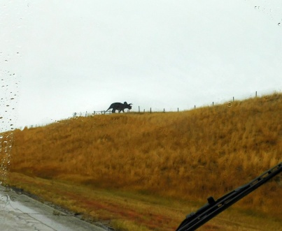 I suppose if I was destined to meet a Triceratops, it would happen in Wyoming!