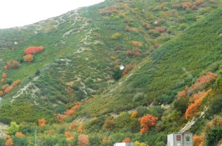Autumn colors are appearing - and it's a good time of year.