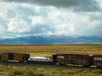 Rail, cattle, and mountains all in one photo. I had to shoot!