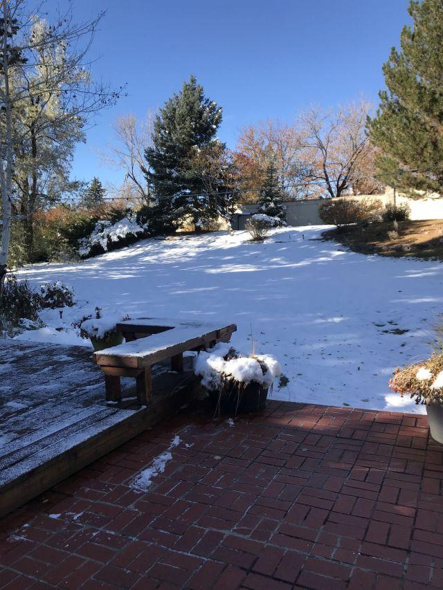 2019-10-25c Colorado backyard