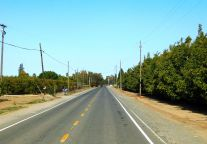 A lovely country lane as I take these the back roads to miss the towns of Live Oak and Gridley.