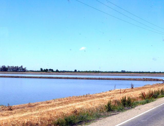 2020-4-30k flooded paddies