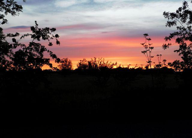 2020-4-30p sunset