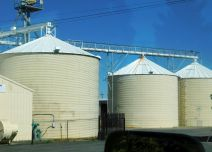 A set of rice silos in Biggs that I helped build almost 50 years ago when I lived in the area.
