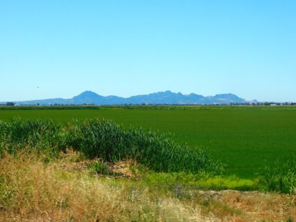 A beautiful view of the Sutter Buttes from CA165.