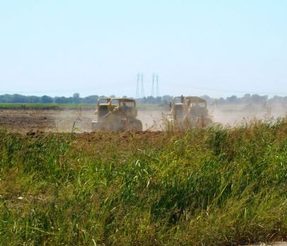 Cat tractors deep ripping what was an orchard not long ago.