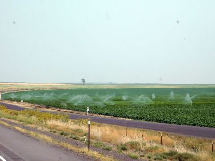 It seemed that the nearer I drove to Snake River, the more agriculture I saw. They can't grow crops without water!