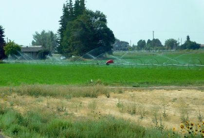 A portable rain storm called sideroll irrigation.