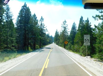 Finally on CA20. It was a straight drive here, but a zillion curves awaited me on my downward trek to the valley below.