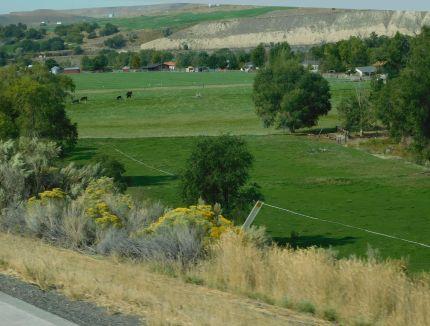 ...and another beautiful Idaho farm.