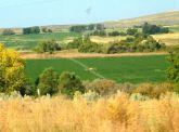 2020-10-2i Oregon farm country