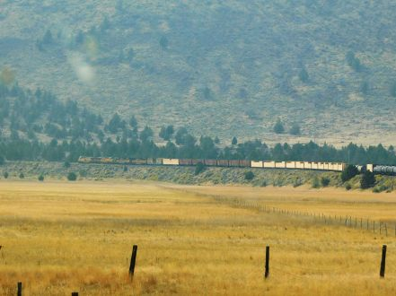 A freight train chugged through the grasslands. This photo required a lot of editing due to the smoke, but it turned out not half bad.