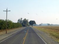 The lovely back road from Biggs to Gridley. And it was still smoky.